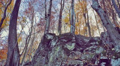 Erdőrezervátum túra Kékestetőn 07